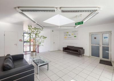 Hohmannhaus - staircase